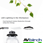 LED in the Workplace Brochure
